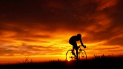 gallery/0-cyclist